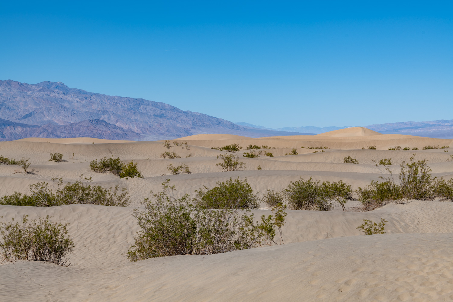 Mesquite Flat Sand Dunes at Death Valley National Park
