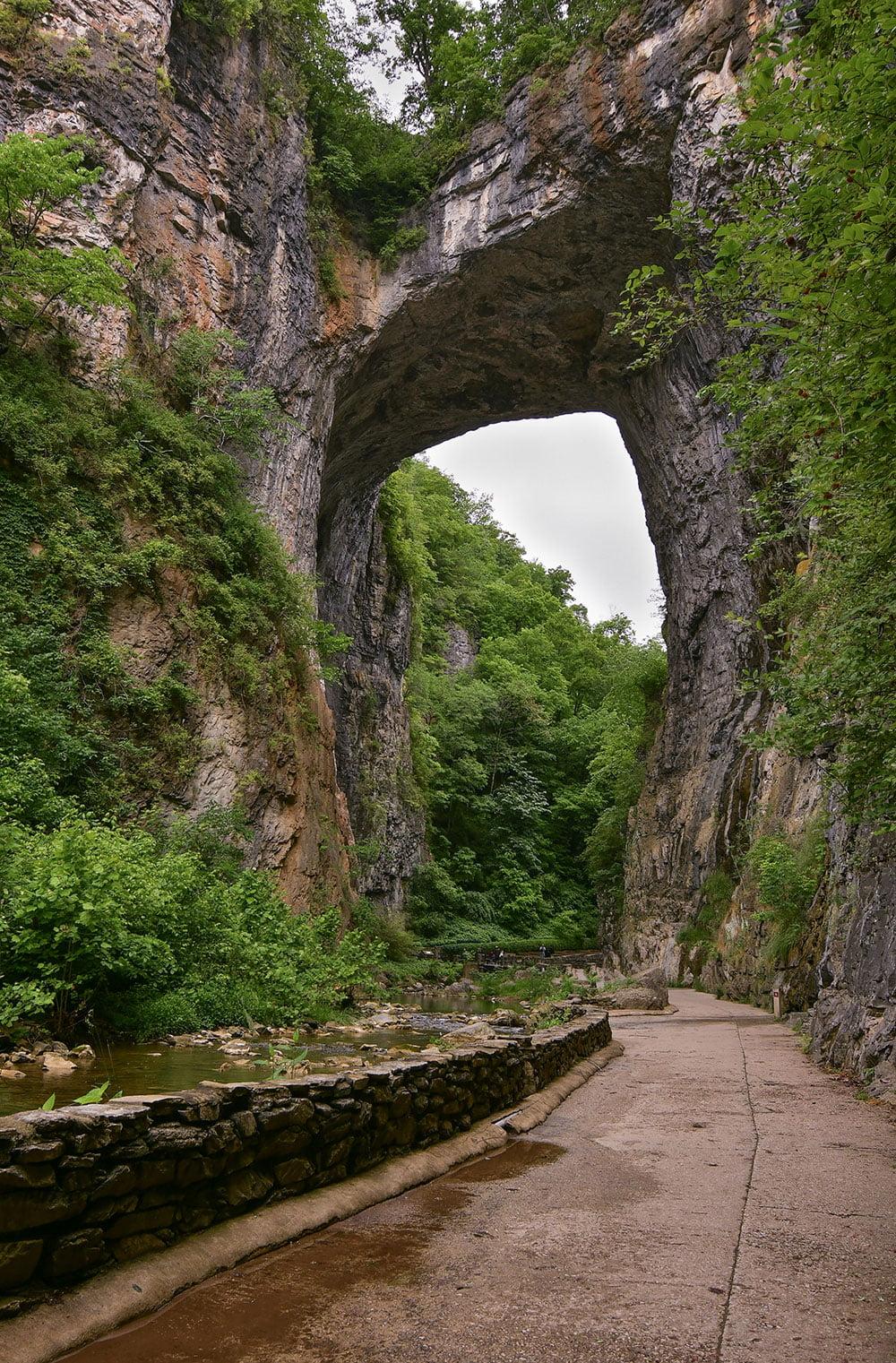Natural Bridge State Park / Photo by Scott