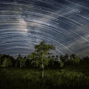 Montana Darkstar Photography